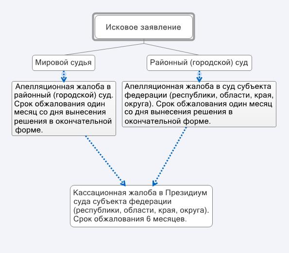 apellyatsionnaya galoba poryadok-obzhalovaniya