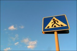 Что делать, если сбил пешехода