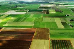 Арендная плата за землю: как рассчитать размер от рыночной и кадастровой стоимости для физических лиц?