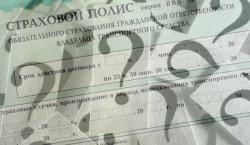 Полис ОСАГО в 2019 — самый полный обзор в рунете