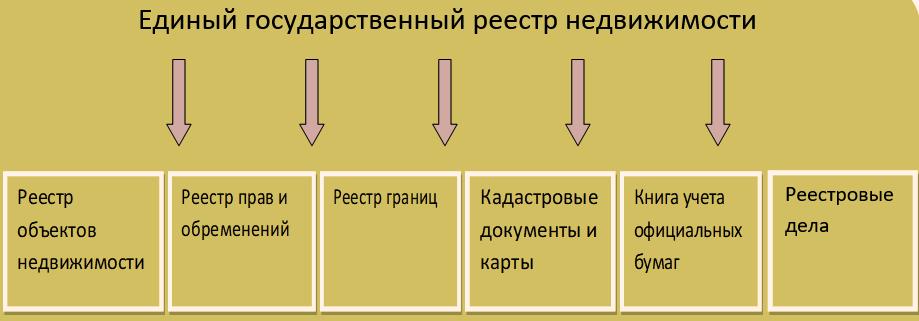 struktura-egrn